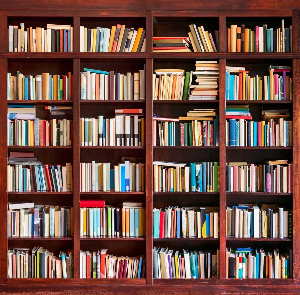 Bibliotheek « Camping Toodlermillen